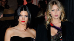 ALERT: Gigi Hadid's and Kendall Jenner's knees are missing !