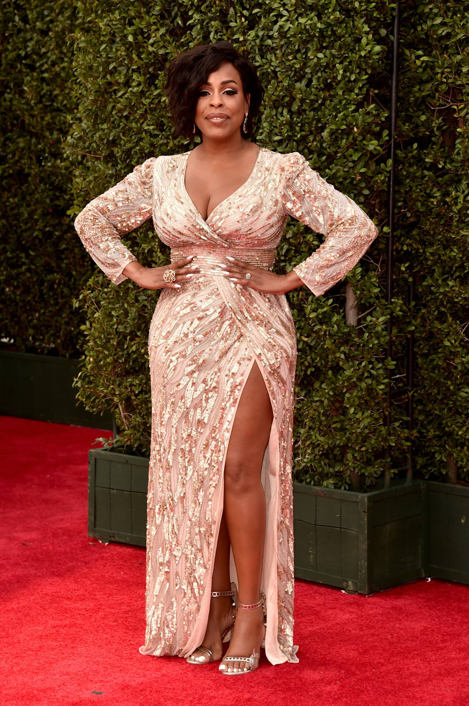 Niecy Nash (Photo by Alberto E. Rodriguez/Getty Images for NAACP )